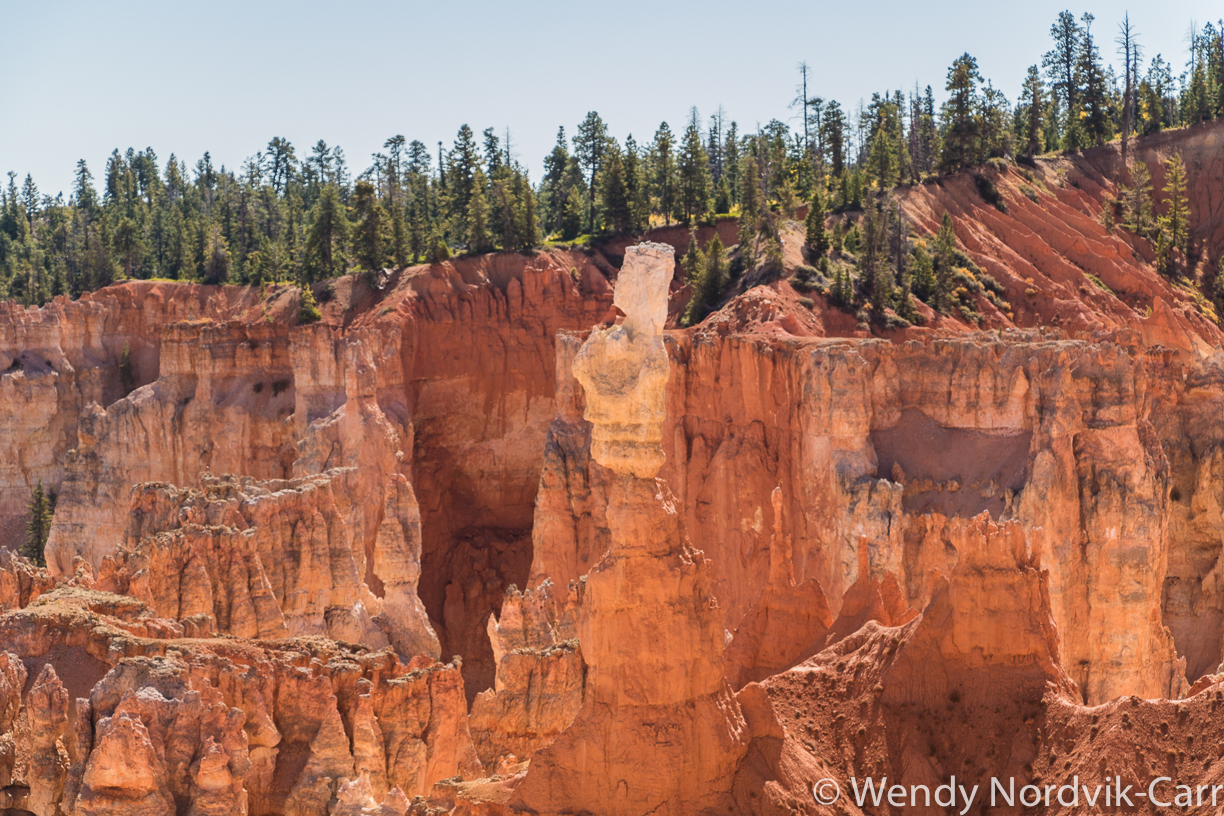 Hiking trails in Bryce Canyon National Park - The largest hoodoo collection in the world.