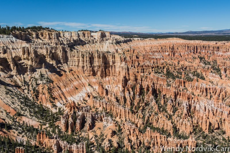 Travel to Bryce Canyon to discover the largest hoodoo collection in the world. Bryce Canyon Amphitheatre is the most visited area of the park. Photo Credit: Wendy Nordvik-Carr