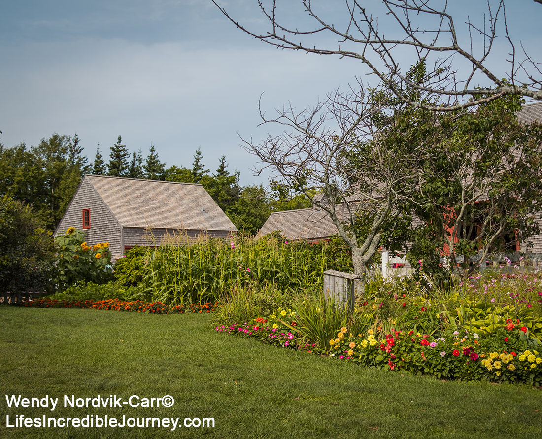 "Green Gables stunning countryside setting is located in Prince Edward Island National Park in Cavendish. Cavendish and the 19th century farm, Haunted Woods and Lover's Lane were made famous by author Lucy Maud Montgomery with her stories about ""Anne of Green Gables"". Don't miss this popular tourist destination on the scenic drive known as Green Gable Shore. Photo Credit: Wendy Nordvik-Carr©"