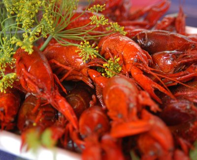 Crayfish - Traditional Foods of Finland. Photo Credit: Visit Finland