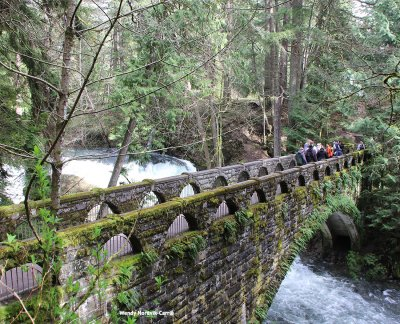 Top hikes near Metro Vancouver explore Whatcom Falls, Bellingham Washington. Photo Credit: Wendy Nordvik-Carr©