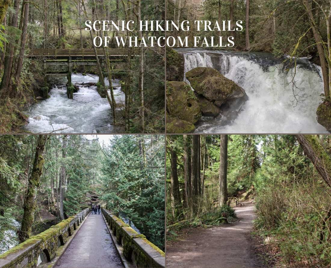 Scenic hikes at Whatcom Falls Park in Bellingham, Washington